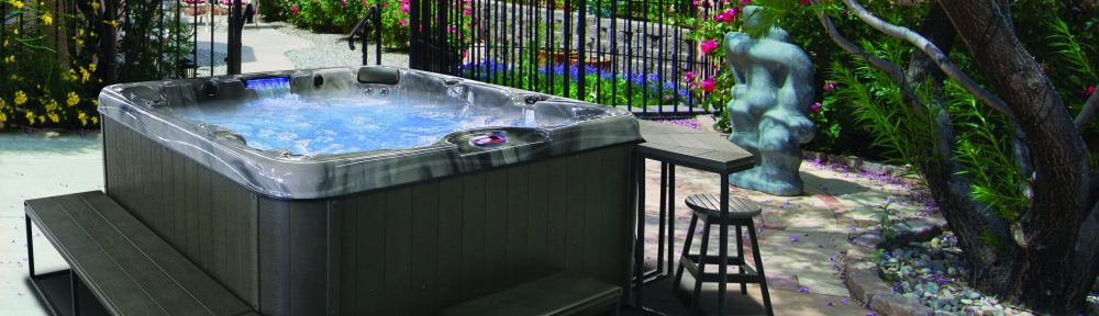 Portable Spa Necessities and Accessories